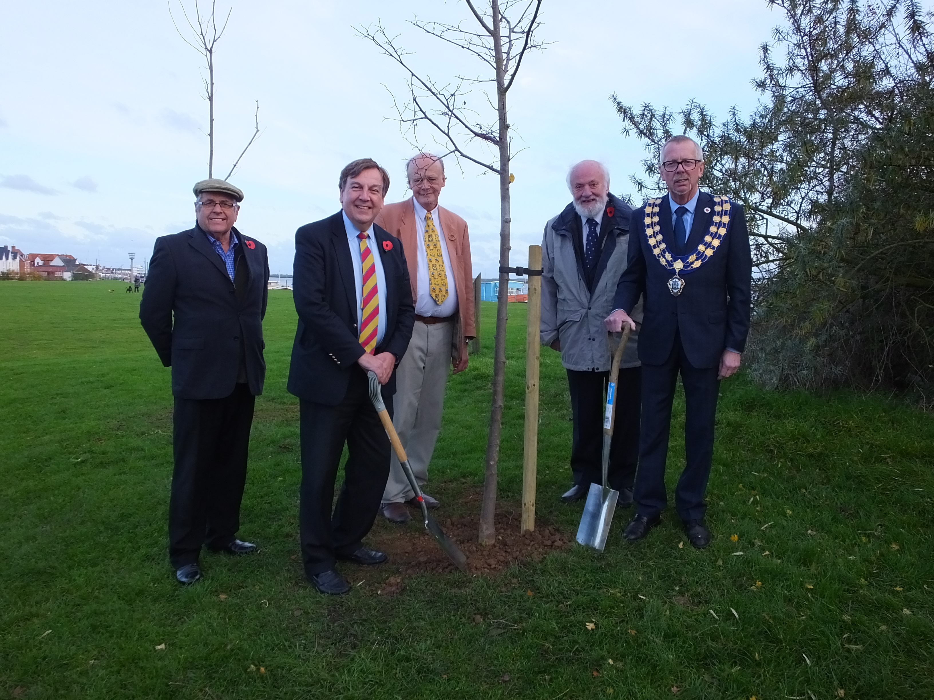 Queen's Commonwealth Canopy Tree Planting